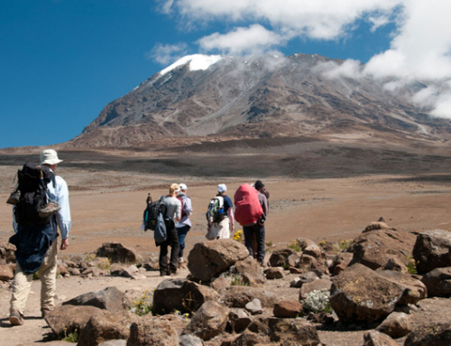 Kilimanjaro Hiking Machame Route